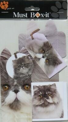 Persian Grey Gift Pack