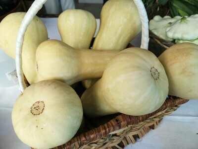 Butternut (Organic)