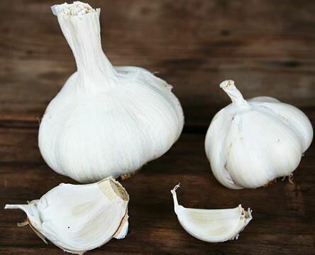 Egyptian White Garlic (1 head)