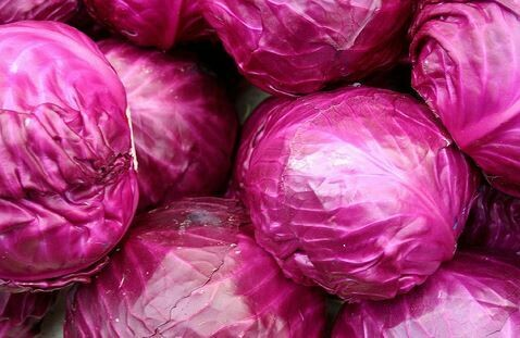 Red Baby Cabbage (2)
