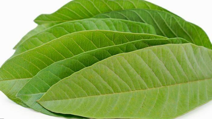 Guava Leaves (bag)