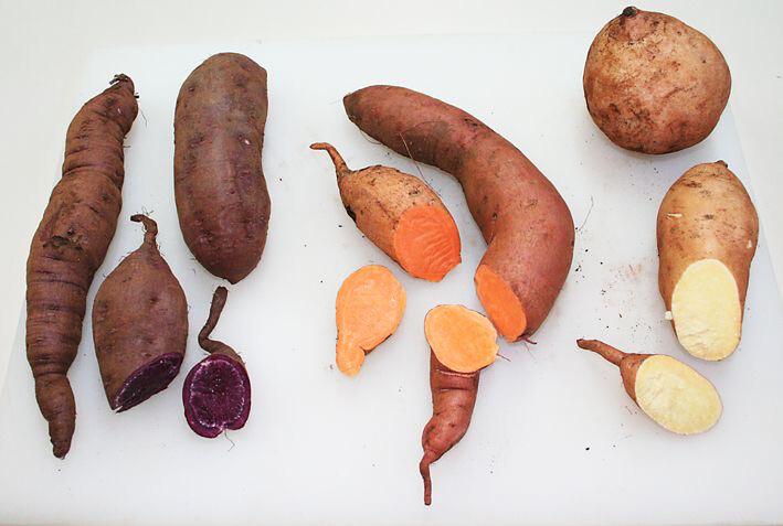 Sweet Potato - Orange, White and Blue mixed pack 1kg
