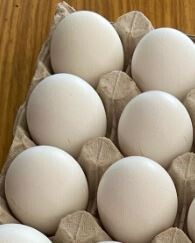 Free Range Eggs (6) (Free delivery only applies if part of a bigger)order