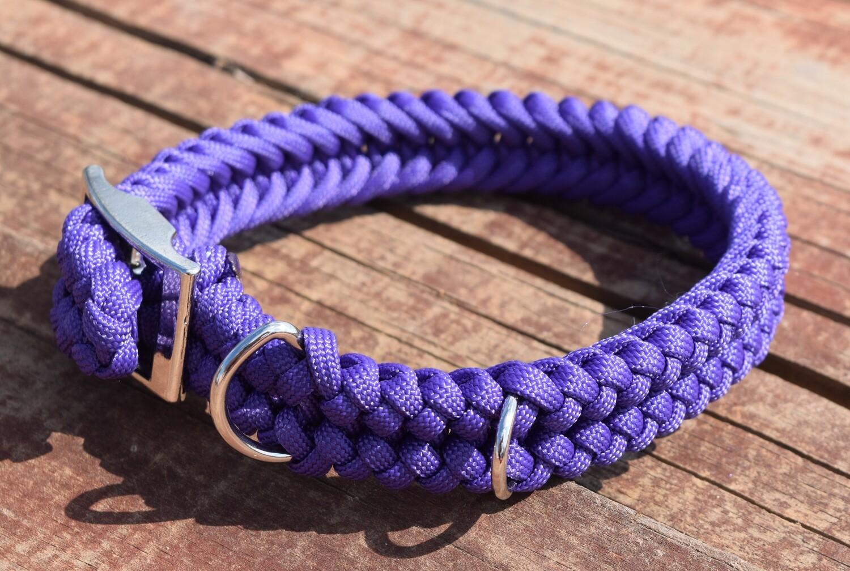 Sanctified Dog Collar