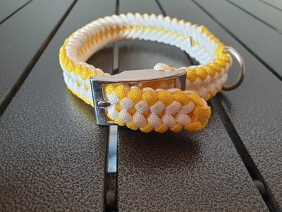 Yellow and White small collar