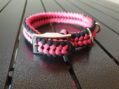 Black and Pink small collar