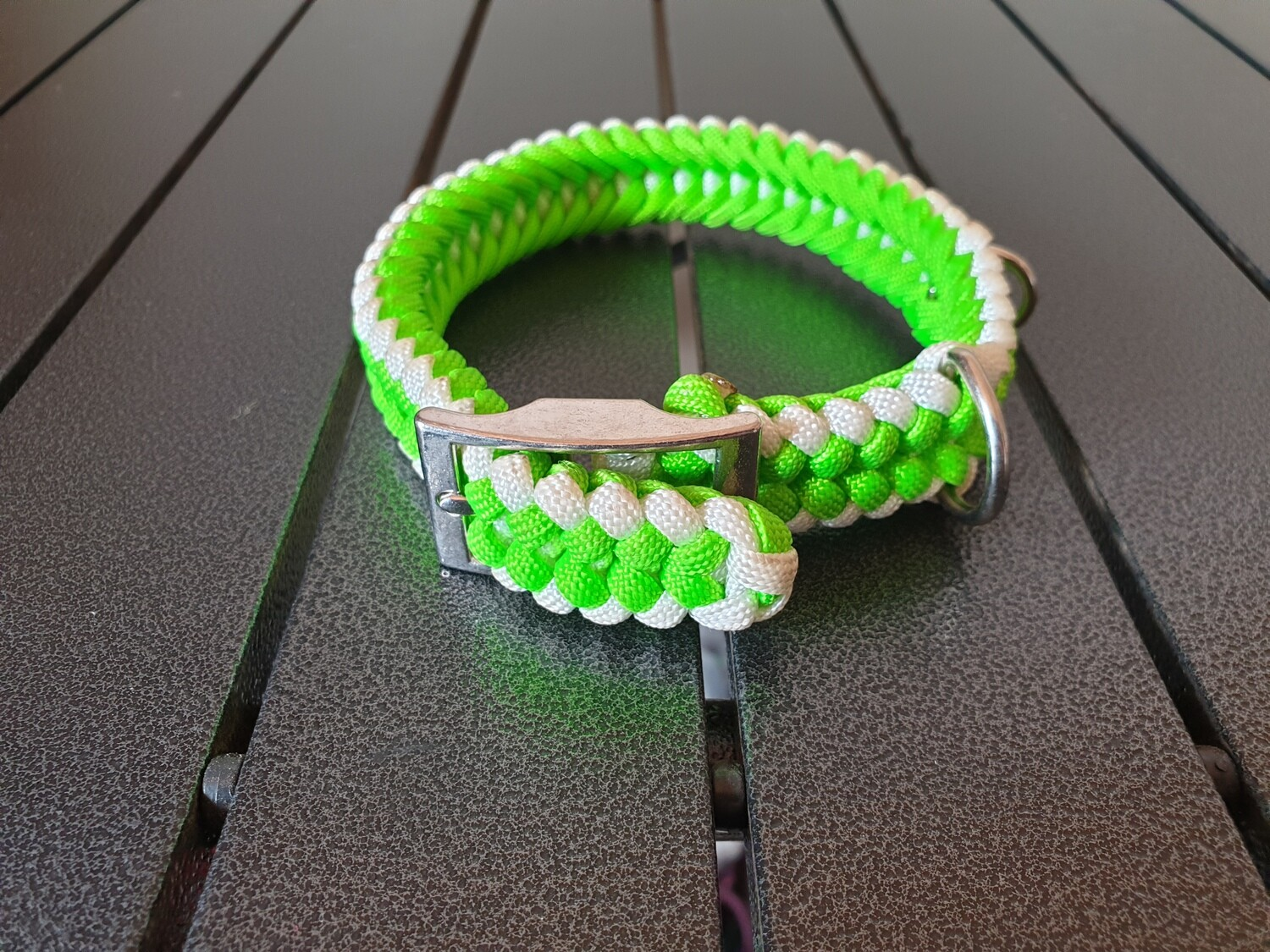 Lime and White small collar