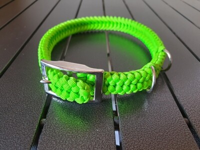 Lime Medium Collar