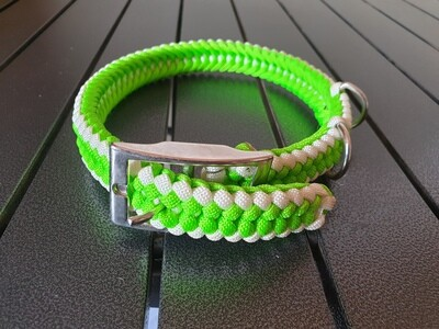 Lime and white Medium Collar