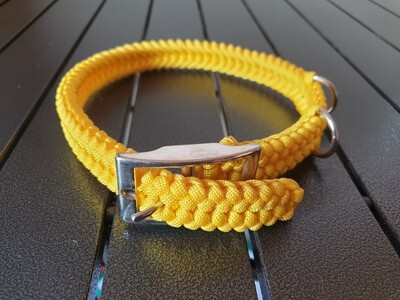 Yellow Medium Collar