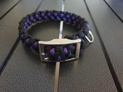 Drakon Dog Collar