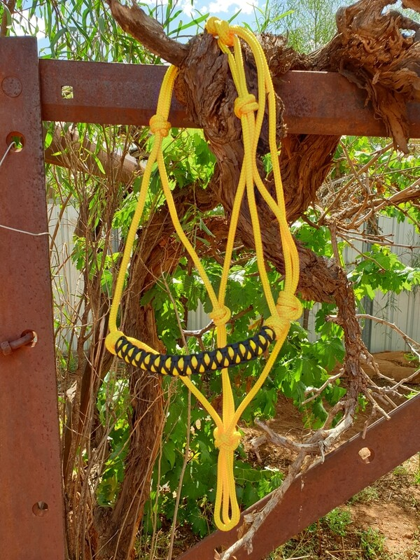 Drakon Yellow/Black Rope Halter