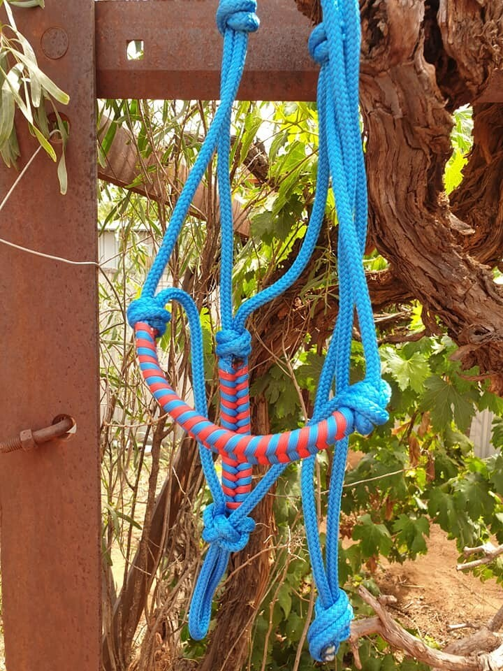 Blue and Red Aztec Pony Halter