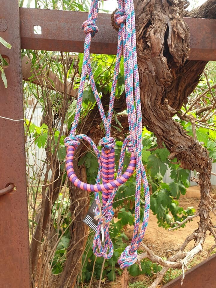 Unicorn, pink and purple Aztec Pony Halter