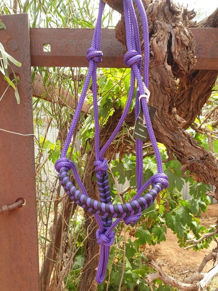 Purple and Black Aztec Pony Halter
