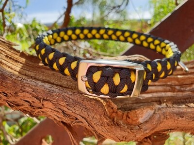 Yellow and black medium drakon collar
