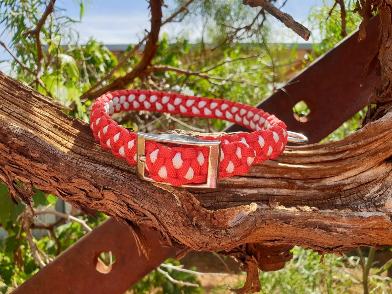 Red and white medium drakon collar