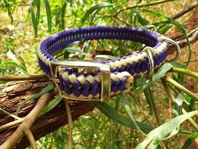 Purple and biege Medium Collar