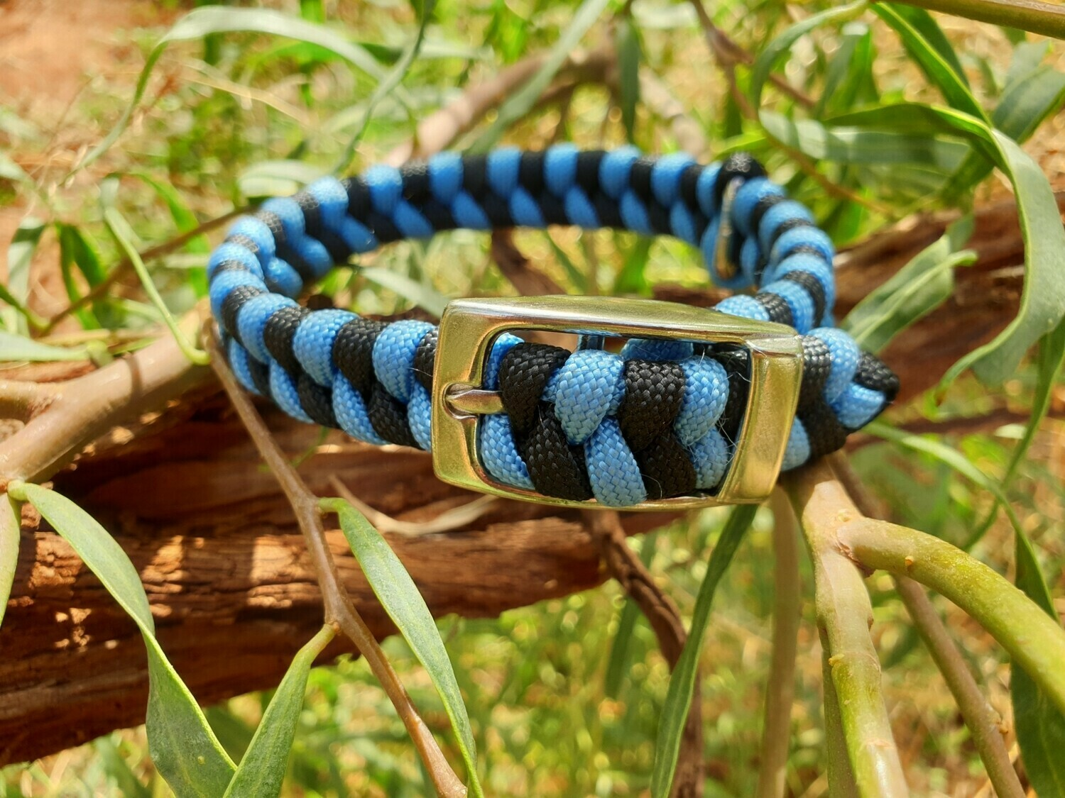 Baby blue and black x-small dog collar