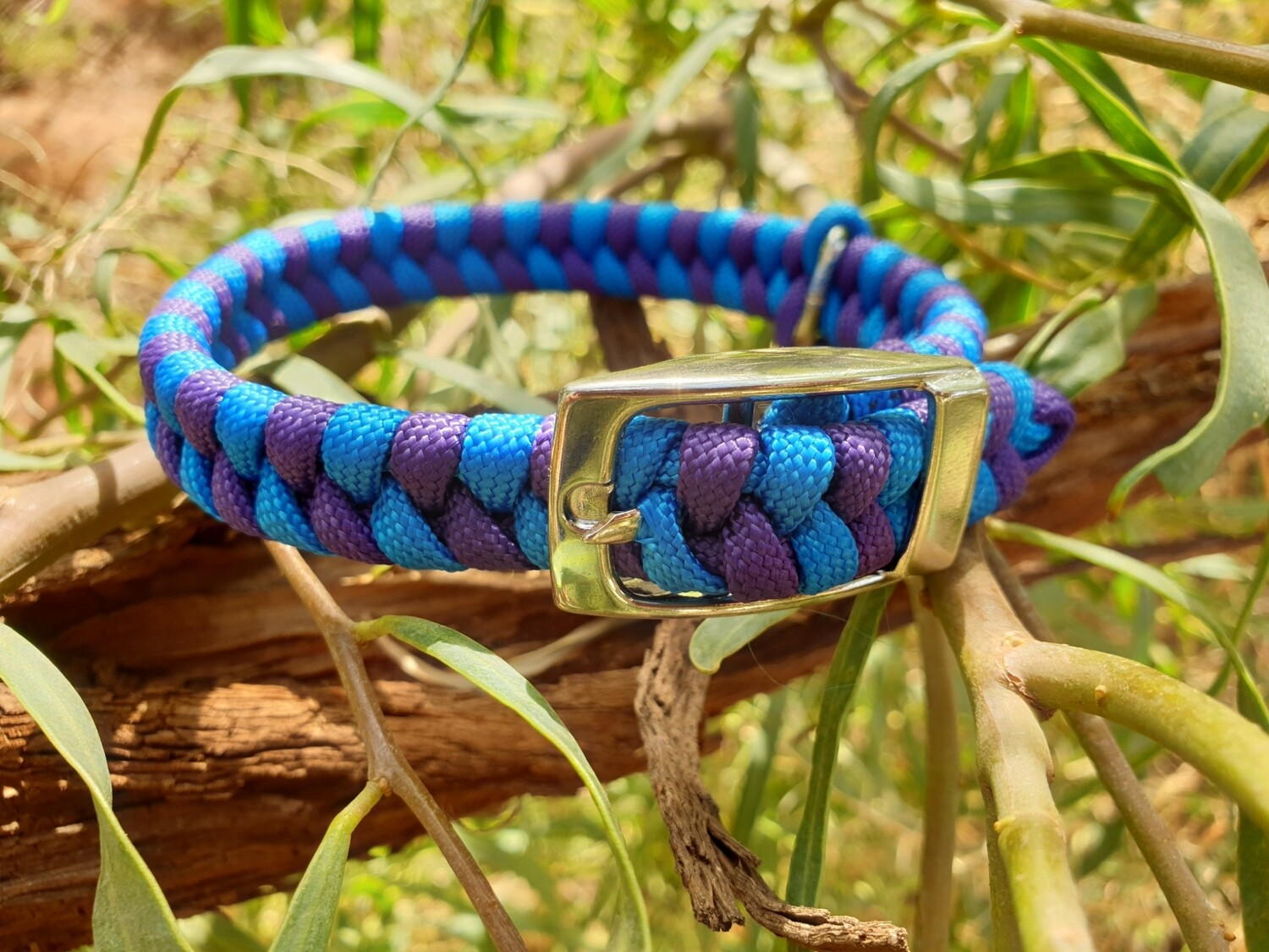 Blue and Purple x-small dog collar