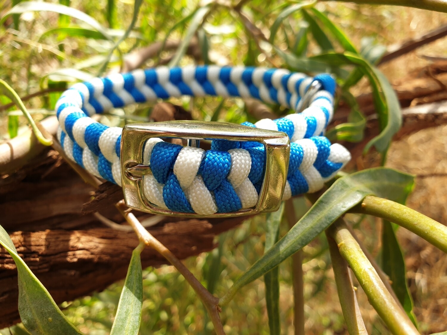 Blue and white x-small dog collar