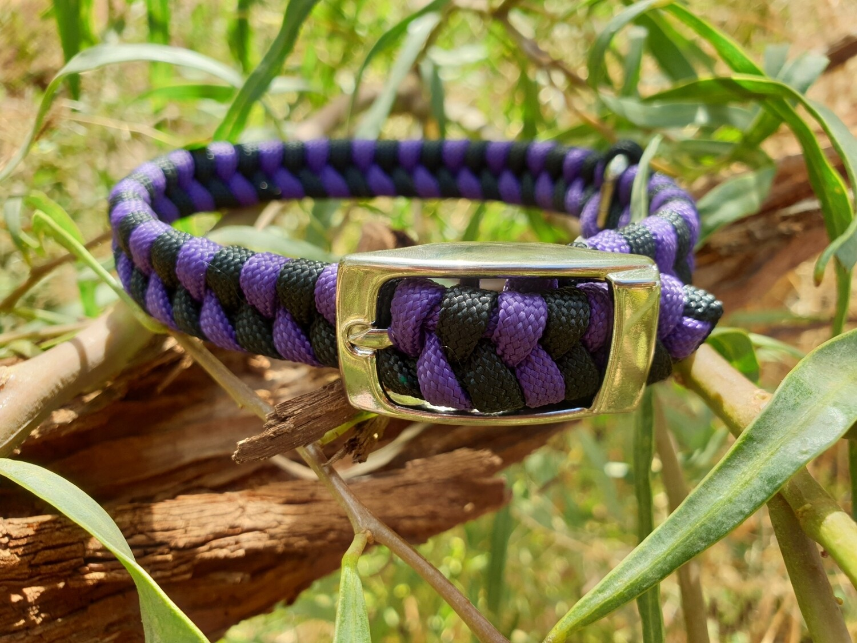 Purple and black x-small dog collar