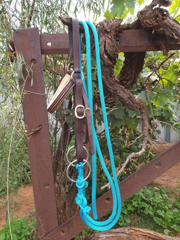 6ft Aqua Split Rope Reins