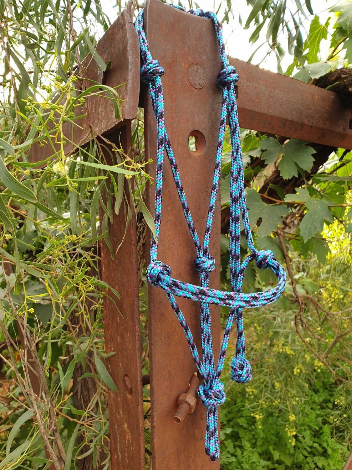 Aqua/Purple/Black Rope Halter