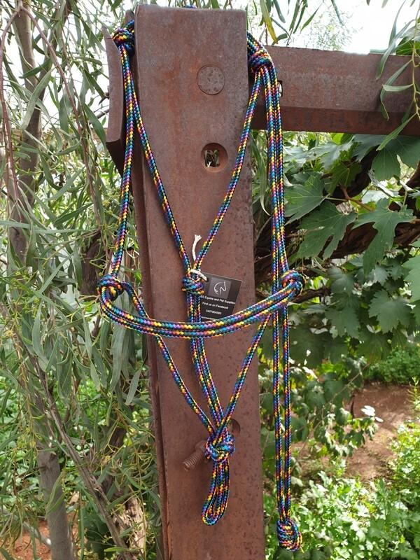 Black Rainbow Rope Halter
