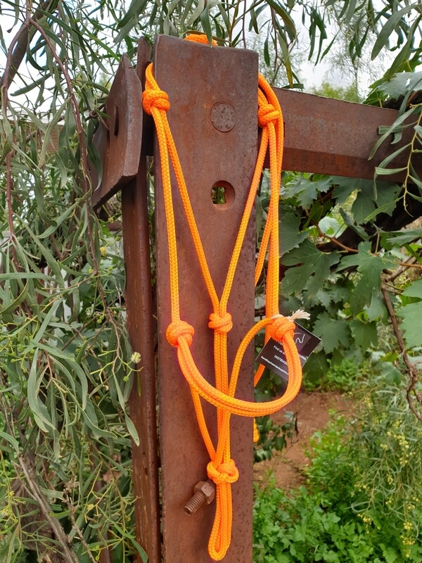 Orange Rope Halter