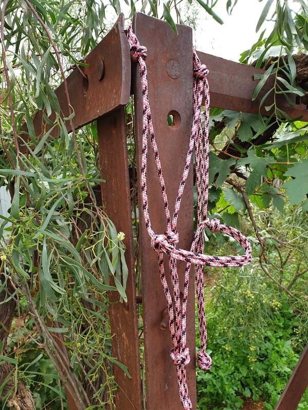 Pink/Silver/Black Rope Halter