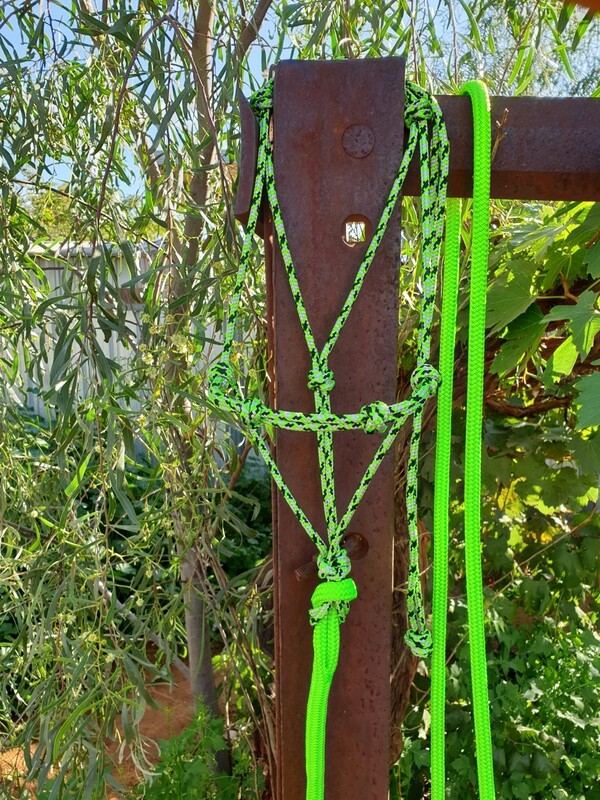 4 Knot Halter Lime Green/Silver/Black