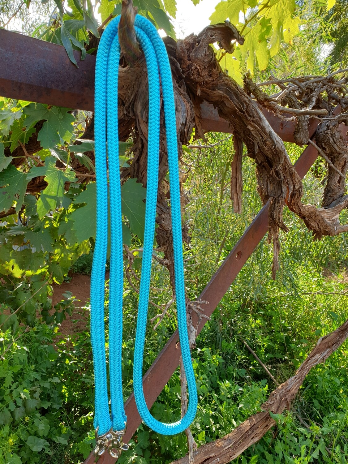 Aqua Rope Reins with Trigger Clips