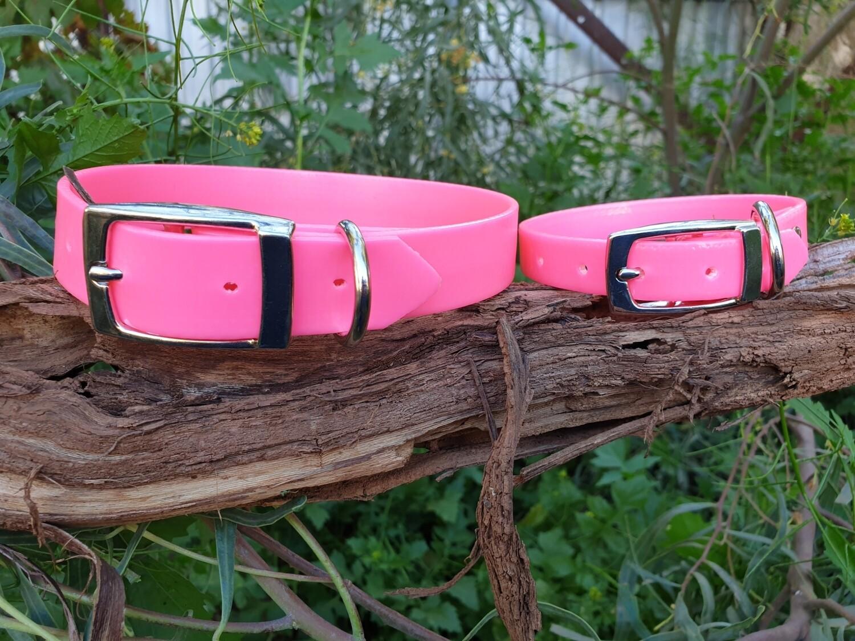 Hot Pink PVC collar.