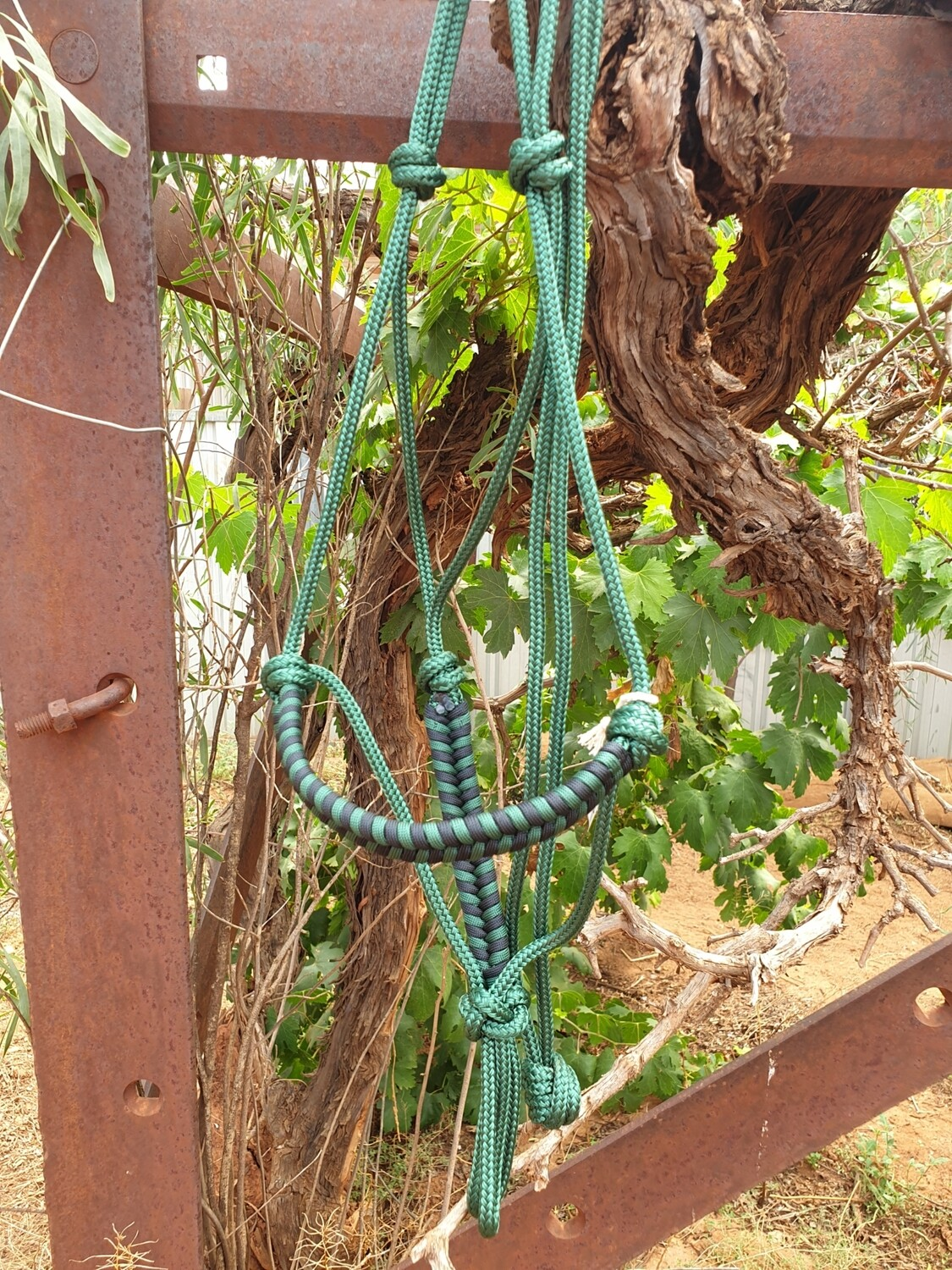 Aztec Hunter Green/Black Rope Halter