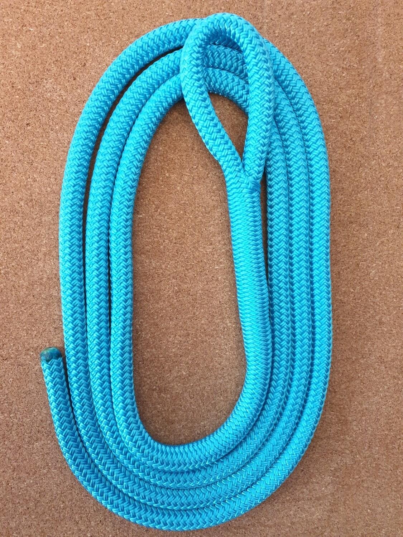 Aqua Horse Lead