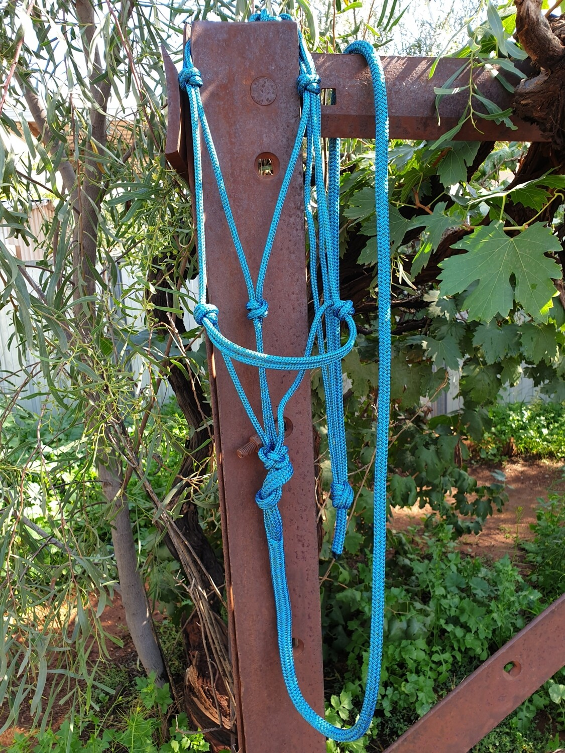 Mottled Green/Blue Horse Lead