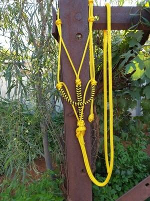 Yellow Horse Lead