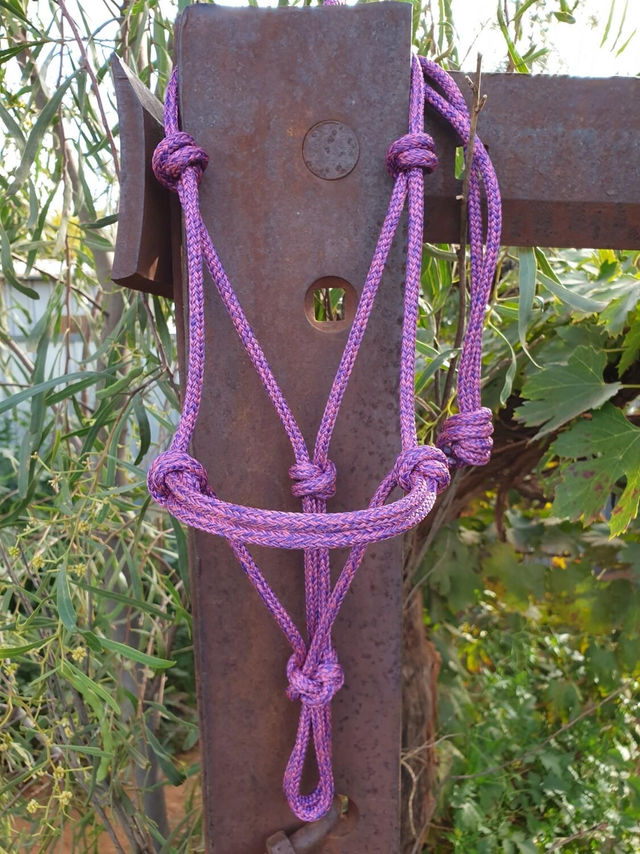 Mottled Pink/Purple Rope Halter