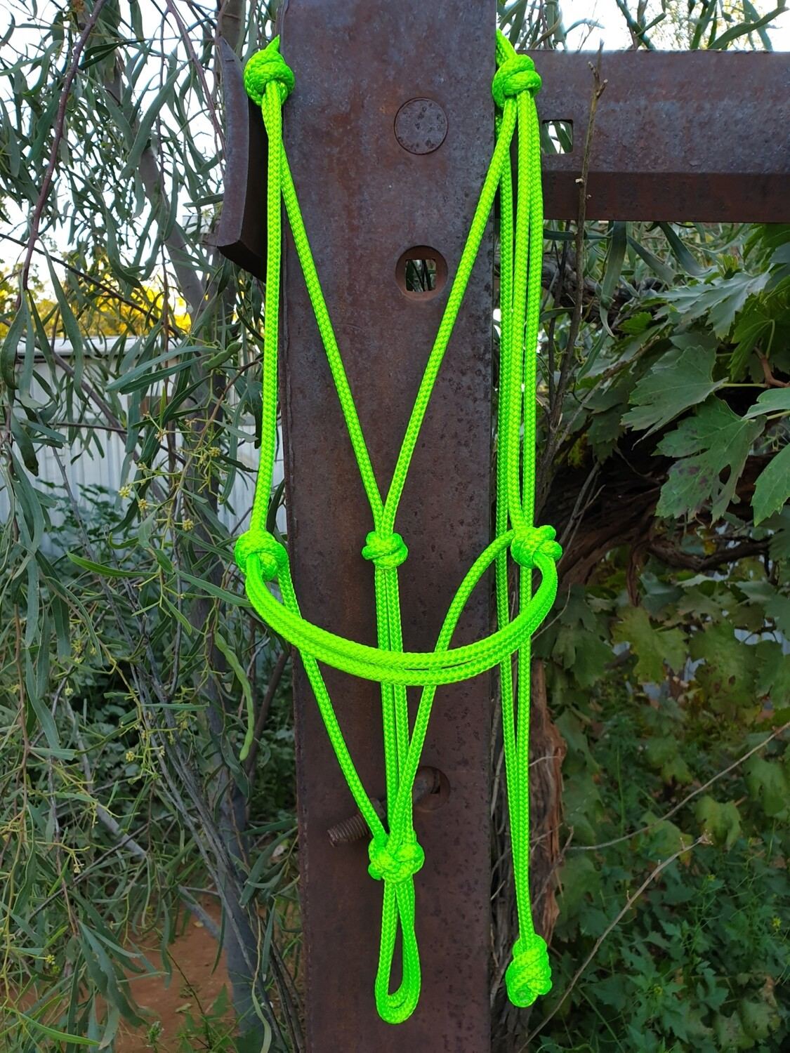 Lime Green Rope halter