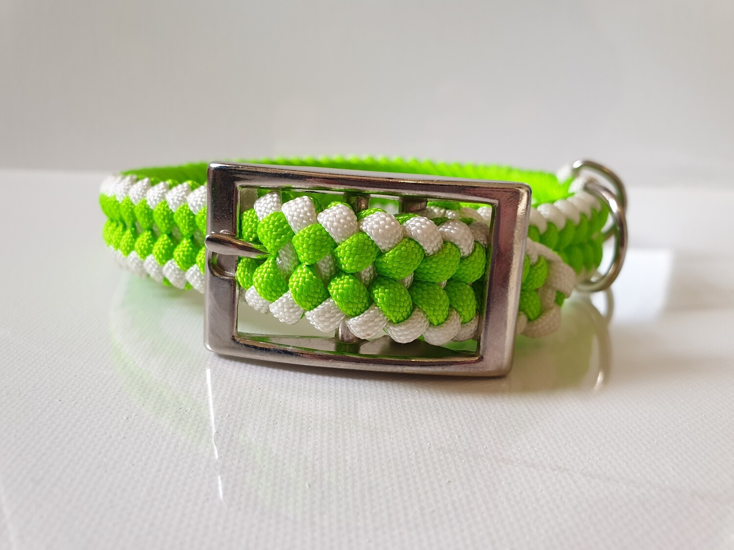 Sanctified Medium Lime Green/White Dog Collar