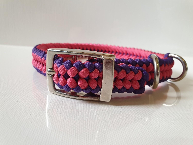 Sanctified Medium Pink/Purple Dog Collar