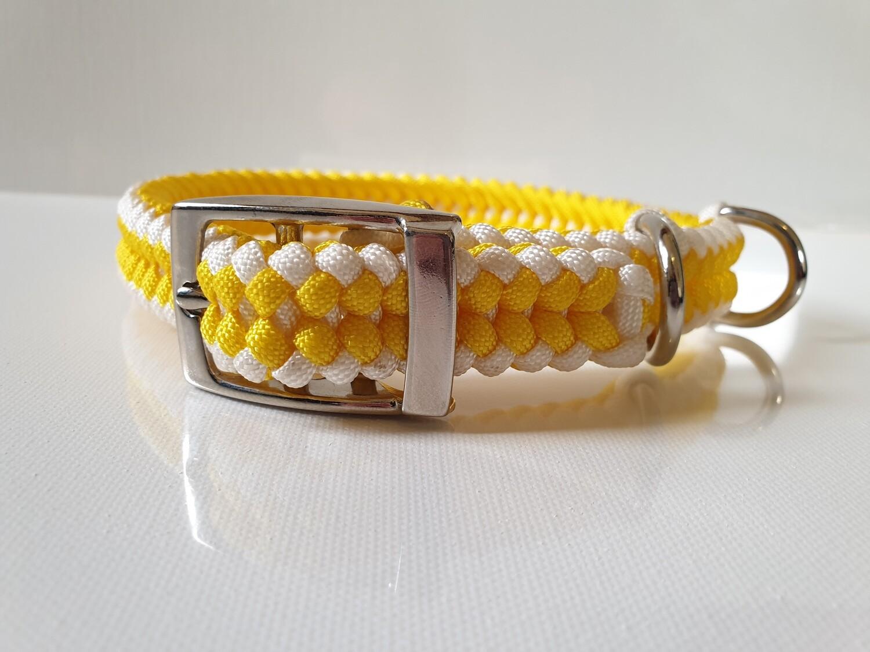 Sanctified Medium Yellow/White Dog Collar