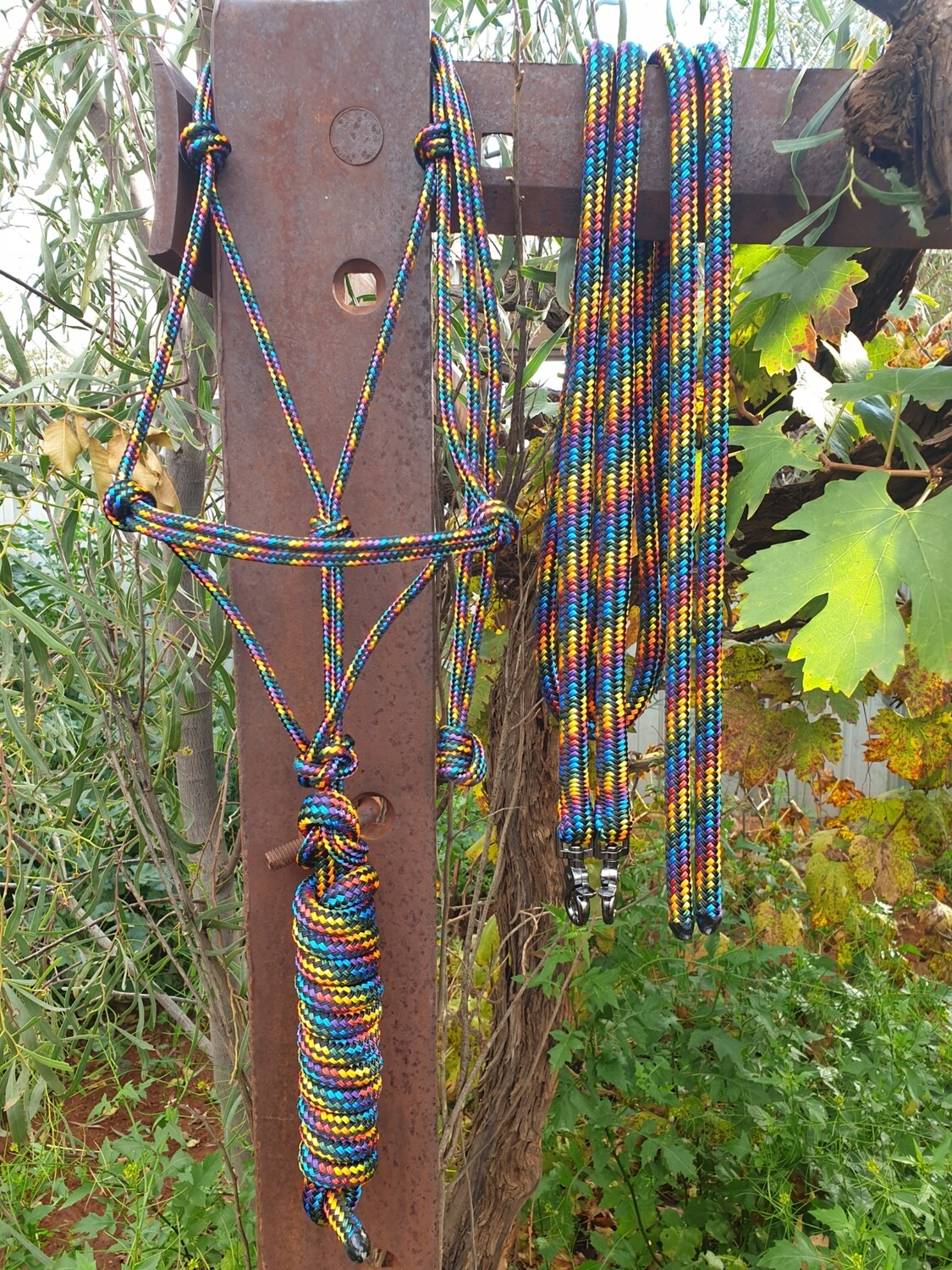 Black Rainbow Rope Halter, Lead and Rope Reins Set