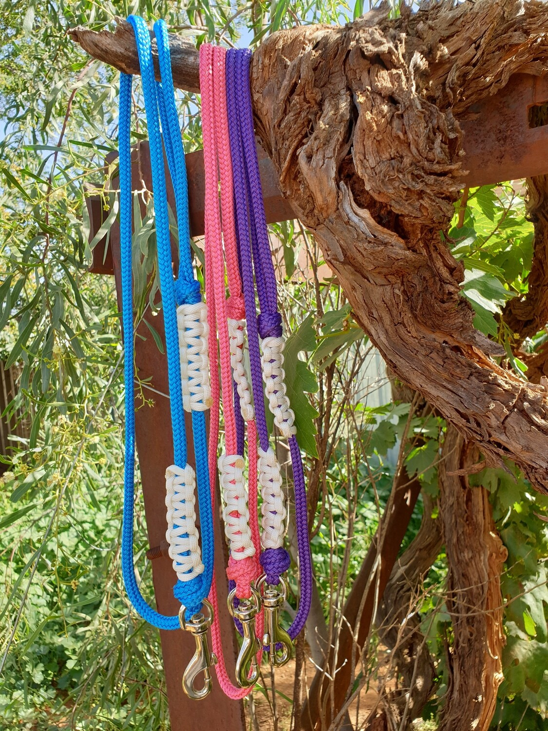 Rope Dog Leads
