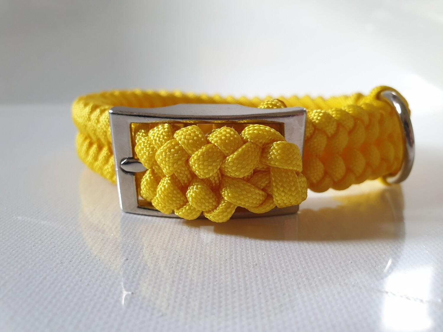 Sanctified Small Yellow Dog Collar