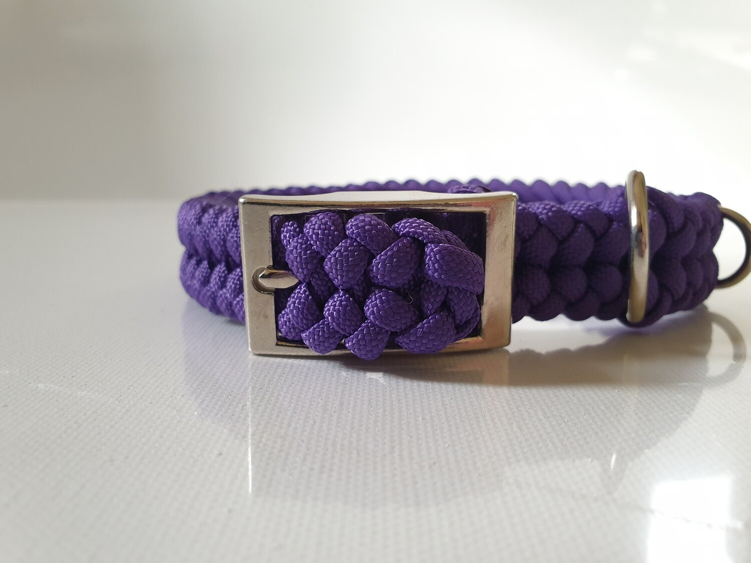 Sanctified Small Purple Dog Collar