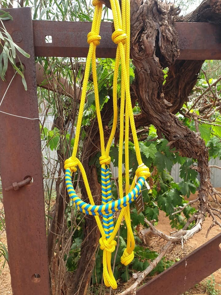 Aztec Yellow/Blue Rope Halter