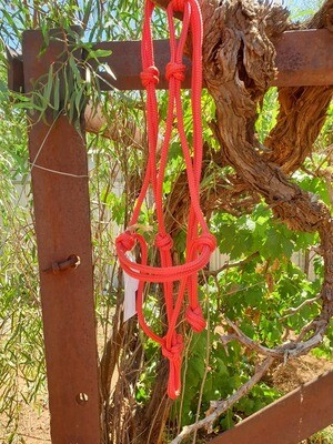 Red Rope Halter