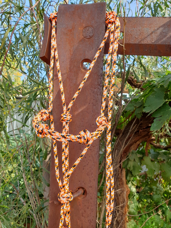 4 Knot Noseband Standard Rope Halter